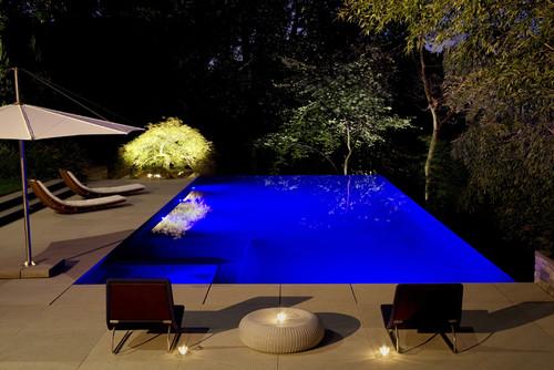 Modern Infinity Pool Landscape
